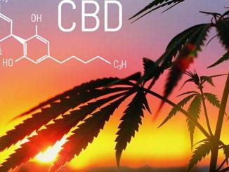CBD et le stress